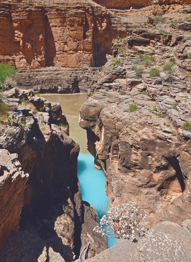 havasu creek, arizona3