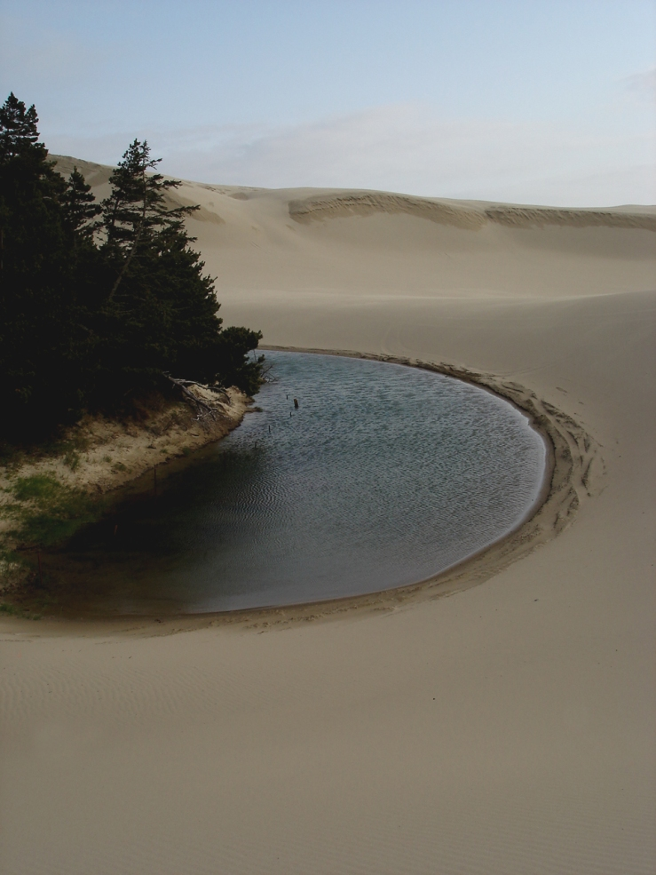 oregon-sand-dunes