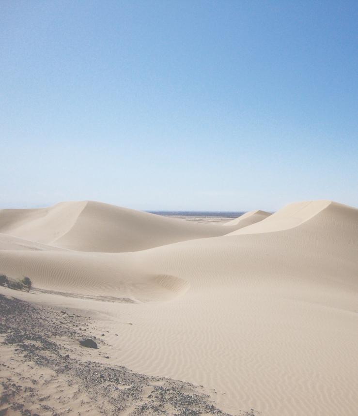 oregon-sand-dunes3